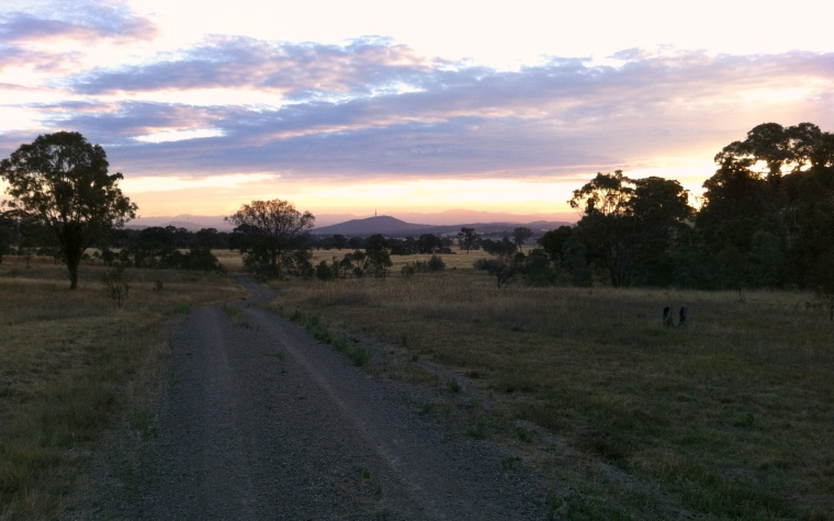 View from Goorooyaroo Reserve south to Black Mountain and the Brindabellas
